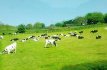 北爱尔兰风景