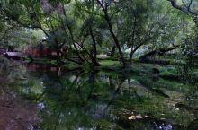 束河古镇三圣寺,星期八客栈周边