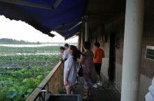 赤湖,风景优美,清凉一夏,美食佳肴
