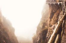 时而清晰时而云雾中,让人不禁联想到神话中的蓬莱仙境,云中楼阁,试想在这片山中如果有一片坐立于山巅的茶