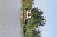 美丽的洪泽湖湿地公园,国家级景区,适合一家人来此地旅游,吃喝玩住真心不错。晚上住在湿地公园里面,欣赏