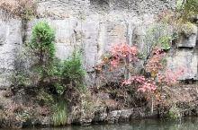"""黄花溪位于潍坊青州市境内,这里景色优美,被众多游客称为""""北方九寨沟""""。从青州市庙子镇圣峪口村西南行2"""