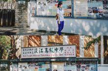 台湾自由行《不能说的秘密》淡江中学取景地打卡 顺着真理大学正门的路走过去,旁边就是周董的母校私立淡江
