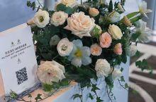 Saltram锁唇酒庄庆典 终于完成全部的 花艺及植物设计及执行。
