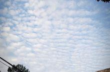 好久没看过这么蓝的天空了!真的好美