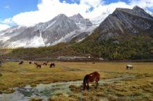 洛绒牛场是一个海拔4150米的牧场,藏民们喜欢带着牛儿来这里放牧,雪山、草地、湖水,好美的地方。
