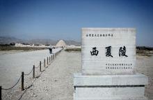 关于西夏王陵:  西夏王陵又被称之为西夏帝陵,西夏黄陵,它是西夏历代帝王陵以及皇家陵墓,是全中国现存