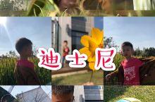 上海11月可以玩什么? 11.2,3日迪士尼生态园 音乐节 有新裤子、刺猬、薛之谦… 到底迪士尼好不