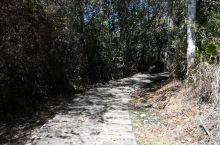 南投日月潭玄奘之路打卡攻略 玄奘之路,步道长850米,与青龙山步道重叠一部分,从青龙山上的玄奘寺到山