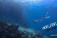 菲律宾·墨宝丨打卡世界级潜水点·去看沙丁鱼风暴吧!  这是位于宿务的一座滨海小城,被称为沙丁鱼风暴故