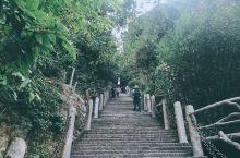 第一次去上饶,最吸引我的地方就是三清山,海拔一千八百多米,奇峰怪石、古树名花、云海雾涛来总结他最合适