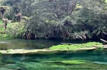 清澈见底的湖水