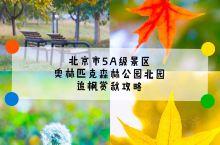 深秋将至,其实关于这个话题,在北京这座古都将会有着更好的诠释,美丽的景色散发到了各个角落。今天要推荐