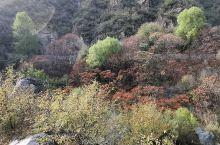 美丽的百里画廊乌龙峡谷