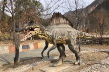 硅化木地质公园下来就是恐龙乐园 地方很小 竟然还收门票……还好有风景年票