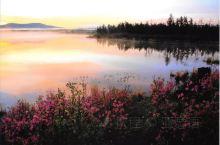阿尔山的精华, 国家森林公园占了一大半, 我们将从草原进入森林, 展现在眼前的景色 从一望无际到郁郁