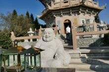 千佛塔前殿宇多多,却没有弥勒佛的栖身之处。