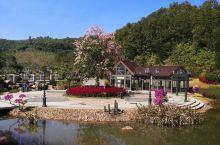 雁山湖的雁山花谷,是粤东首个以花卉为主题的休闲旅游度假区 ,冬日暖阳,繁花似锦。花谷利用天然山谷地形