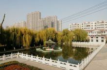 坐上19路公交车,到达荆河公园。公园不是很大,是居住在当地人∽健身∽休闲的场所。里面有爱好者∽钓鱼。