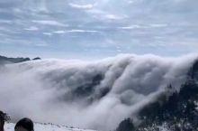 今天神农顶景区现罕见云瀑 转眼一算好久没去神农架了