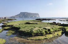 城山日出峰凝灰丘下面有着透水性极强的熔岩大约5千年前岩浆上升过程中与含在熔岩里的地下水反应而产生了大