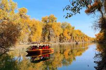 """深秋的胡杨林总能让人觉得身在画中游。泛舟湖上看着两旁的胡杨树缓缓在两旁""""走过""""清风吹来,散落的叶子仿"""