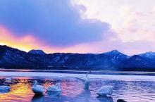 与天鹅共浴的绝美温泉—古丹温泉,温泉位于北海道东部阿寒国立公园的屈斜路湖沿岸,即使湖面冰冻之际,这里