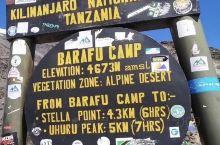 乞力马扎罗山(Kilimanjaro)地处赤道附近,是非洲最高的山脉,它既是火山也是雪山。植物也是从