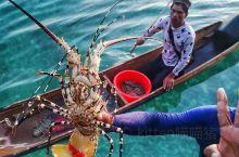 马布岛美食篇。马布岛让我神往的除了清澈的大海就是它的海鲜了。重要的事情说三遍:要砍价、要砍价、要砍价
