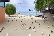 薄荷游玩常见的项目,真假处女岛,名字无所谓,这个岛现在叫教堂岛,里panglao很近船就10多min