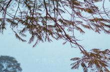 【月光花园,这是看泰姬陵日落最好的地方】  月光花园又叫月亮公园,在亚穆纳河北岸,与泰姬陵隔河相望,