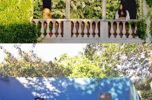 新西兰|在汉密尔顿花园找春天  新西兰北岛的汉密尔顿,藏着一个秘密花园,这里也是吴奇隆与刘诗诗婚纱外