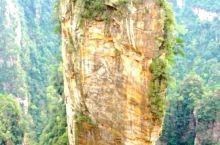 张家界国家森林公园位于湖南省西北部张家界市境内。1982年9月25日,经中华人民共和国国务院批准,将