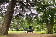 丘吉尔庄园外园秀丽风光!这里绿草如茵,有形态各异的树木,细心培植的花卉,人造湖,休憩亭和小瀑布,赏心