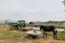 农场乐园。