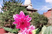 官宣:终于等到你 ——佛教圣地【五台山】 寺庙开放啦 ‖ 受疫情影响,五台山风景区于2020年3月2