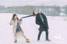 冬季去旅行系列~美瑛的Photo Tour之旅  美瑛的每一个季节都展示着不同的美,能满足人们对四季