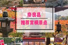 奈良县距离京都和大阪约一小时的车程,红叶季也是游人如织。这里推荐两个经典景点:谈山神社和奈良公园。