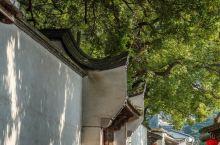 【福州三坊七巷】 福州市区保留了大量的历史建筑,三坊七巷则是其中整体保存较完整的一处,登记的古建筑有