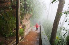 泸州合江笔架山风景区就在合江城边上,跟着导航上山,在道路边的农家乐里停车,就可以沿着路边的石梯开始爬