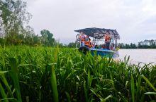 kawa红树林,亚庇三大红树林之一。乘搭安全的长尾船畅游于红树雨林间, 有点像亚马逊支流的那种感觉,