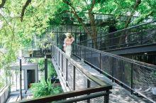 曼谷探店|城市中的森林咖啡店  在曼谷的时间实在是太短,而曼谷又有很多很值得去体验的咖啡店,最后一天