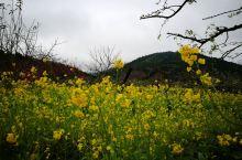满眼都是五彩斑斓,鼻腔里充盈着各种花香,泥土和青草的味道。 心里盈盈的,洋洋的,暖暖的