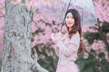 """很多人说,一生一定要去日本看一次樱花,殊不知""""太湖绝佳处,毕竟在鼋头"""",江浙沪就藏着一个最佳赏樱地,"""
