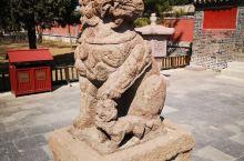 奉国寺这些形态各异的狮子特别吸引我的目光,都有自己的表情和情绪