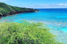 畅游在美妙的恐龙湾,享受看得到的自然美景  来吧!这里不会让你有任何遗憾的!美妙的恐龙湾有着巨大的吸