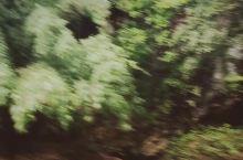 英德峰林有一座华南第一天坑,从天坑底部仰望,悬崖峭壁,钟乳倒悬
