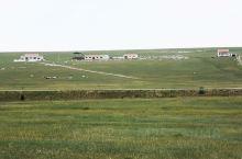 乌兰浩特大草原
