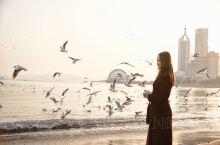 来青岛你可以在胶州湾大桥上极目远眺,水天相接,雾色茫茫,海鸥在近处低飞,迎面吹来的海风也带着湿漉漉的