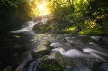 在宁夏最南端有一个地方,这里常年温和湿润,水资源丰富,林草茂密,森林覆盖率达到了80%以上,被称为黄